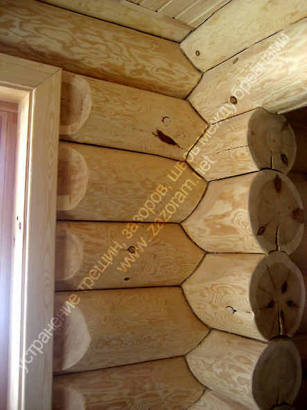сруб дома с щелями между бревнами